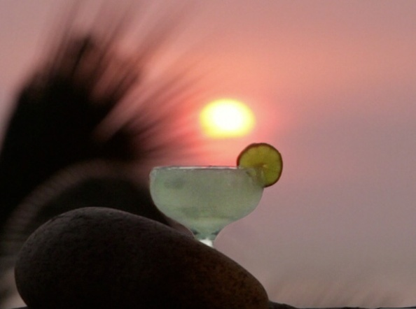 margarita_sunset